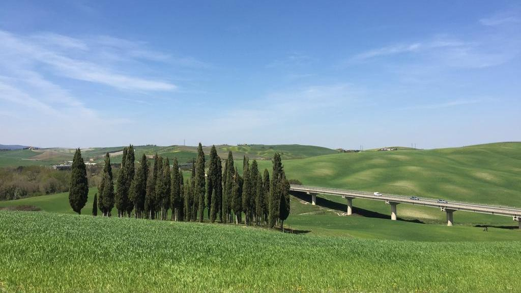 Read more about the article Val d'Orcia